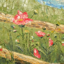 oil knife painting of poppies along old fence