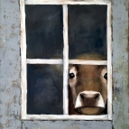 Peek-a-Moo Oil Painting of a Jersey Cow.