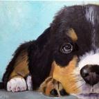 Mia Puppy (oil)